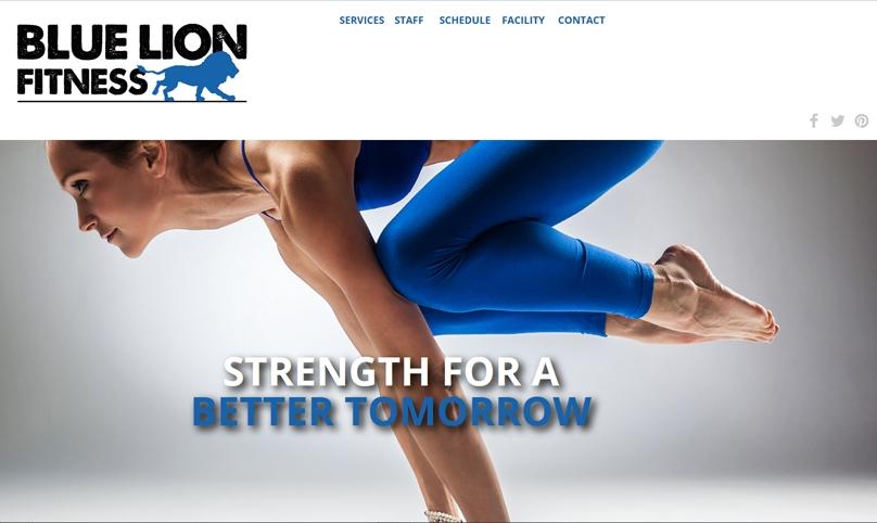 blue lion fitness ann arbor