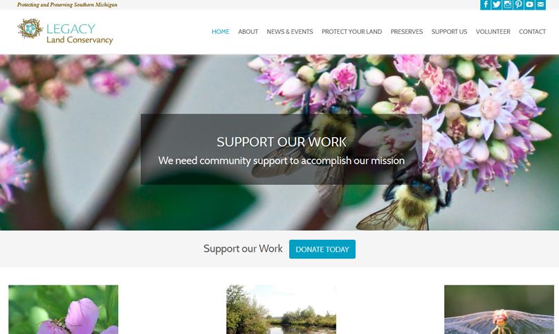 wordpress customization, wordpress web design