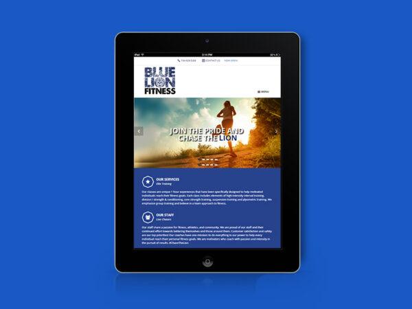 BLUE LION FITNESS